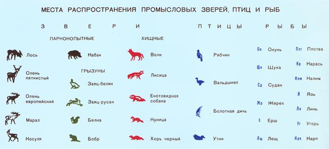 Московская область расположена